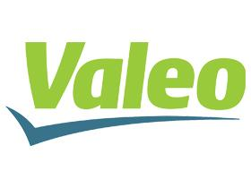VALEO BLISTER TAPONES COMBUSTIBLE  Valeo